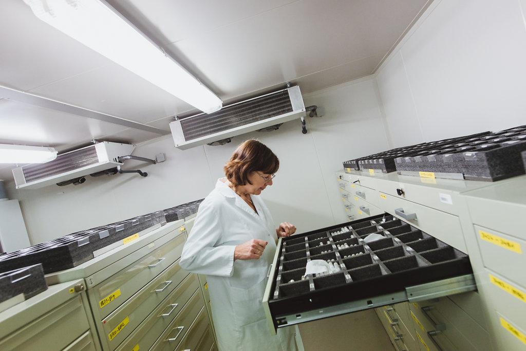 Die Phagendatenbank von Dr. Christine Rohde, Kuratorin AG Bakteriophagen der Abteilung Bioökonomie & Gesundheit im Leibniz-Institut DSMZ (Deutsche Sammlung von  Mikroorganismen und Zellkulturen) in Braunschweig.