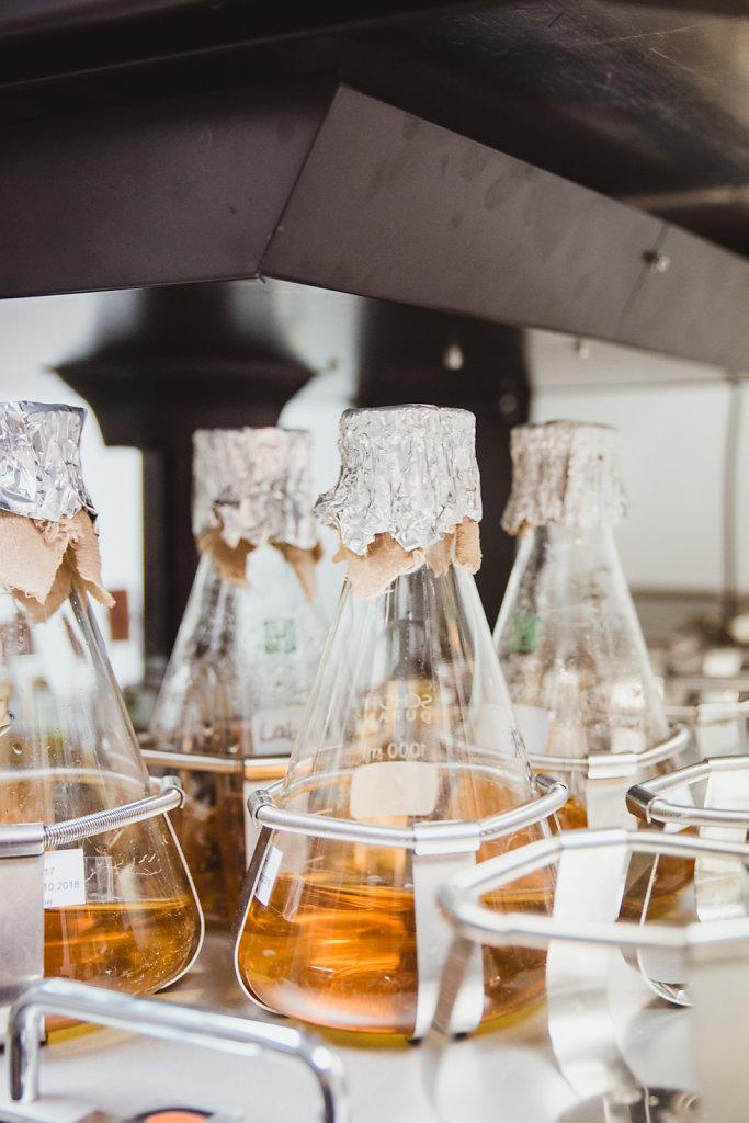 Schüttelgeräte im Labor von Dr. Christine Rohde.